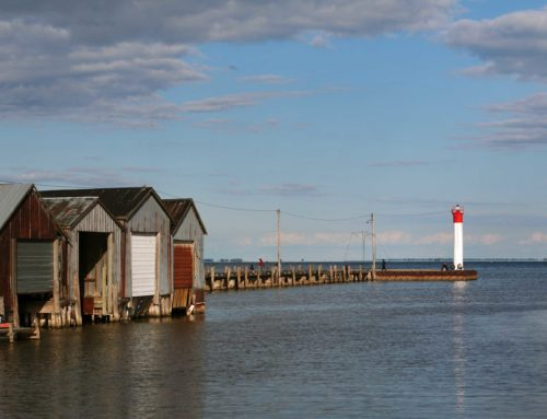 Discover Norfolk County