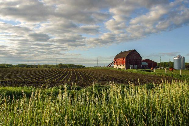 Listings of farms for sale in Delhi Ontario